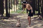 french-bulldog-1258723_960_720.jpg