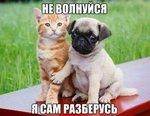 smeshnie_kartinki_147254115651.jpg