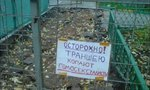 idiotic-and-cool-signboards-01.jpg