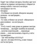 FB_IMG_1537957828646.jpg