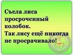 FB_IMG_1542654668393.jpg